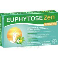 Euphytosezen Comprimés B/30 à Savenay