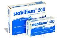 STABILIUM 200, bt 90 à Savenay