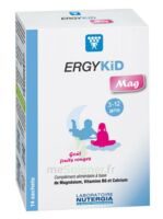 Ergykid Mag Poudre solution buvable 14 Sachets à Savenay
