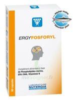 Ergyfosforyl Caps B/60 à Savenay