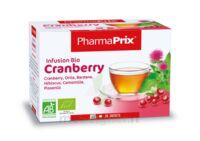 Infusion BIO Cranberry à Savenay