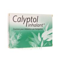 CALYPTOL INHALANT, émulsion pour inhalation par fumigation à Savenay