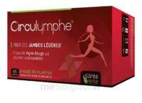 Santé Verte Circulymphe Triple Actions B/30 à Savenay