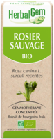HERBALGEM ROSIER SAUVAGE MACERAT MERE CONCENTRE BIO 30 ML à Savenay