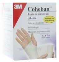 COHEBAN, blanc 3 m x 7 cm à Savenay