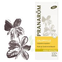 PRANAROM Huile végétale bio Calophylle 50ml à Savenay