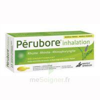 Perubore Caps Inhalation Par Vapeur Inhalation Plq/15 à Savenay