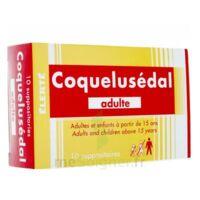 COQUELUSEDAL ADULTES, suppositoire à Savenay