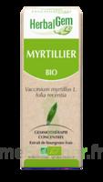 Herbalgem Myrtillier Macérat bio 30ml à Savenay