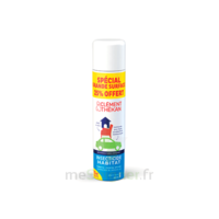 Clément Thékan Solution insecticide habitat Spray Fogger/300ml à Savenay