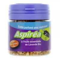 Aspiréa Grain pour aspirateur Lavande Huile essentielle Bio 60g à Savenay
