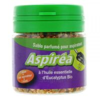 Aspiréa Grain pour aspirateur Eucalyptus Huile essentielle Bio 60g à Savenay