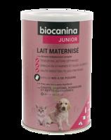 Biocanina Lait poudre maternisé B/400g à Savenay