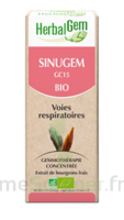 Herbalgem Sinugem Solution buvable bio Fl cpte-gttes/30ml à Savenay