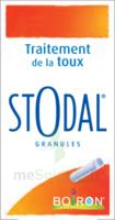 Boiron Stodal Granules Tubes/2 à Savenay