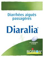 Boiron Diaralia Comprimés à Savenay