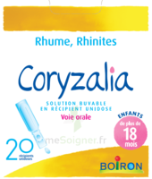 Boiron Coryzalia Solution buvable unidose B/20 à Savenay