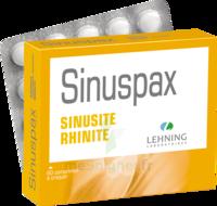 Lehning Sinuspax Comprimés à Croquer 3plq/20 à Savenay