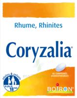 Boiron Coryzalia Comprimés orodispersibles à Savenay
