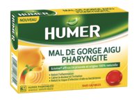 Humer Pharyngite Past Mal De Gorge Baies Sauvages à Savenay
